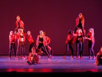 Get Your Groove On at the Spotlight Performance