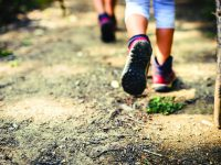 Hiking-A Hands-on Experience: Family Hiking Adventures